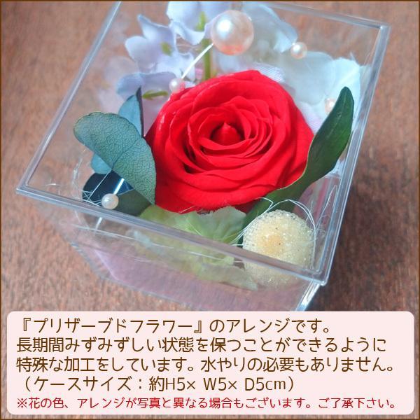 パン 花 ギフトセット(大)誕生日プレゼント 北海道産小麦|arumama|02
