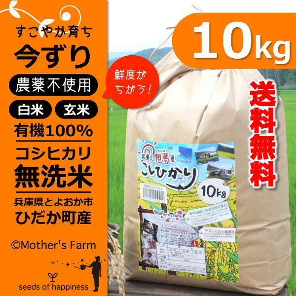 新米 無洗米 玄米 白米 10kg 今ずり米 農薬不使用 コシヒカリ 令和3年産 送料無料