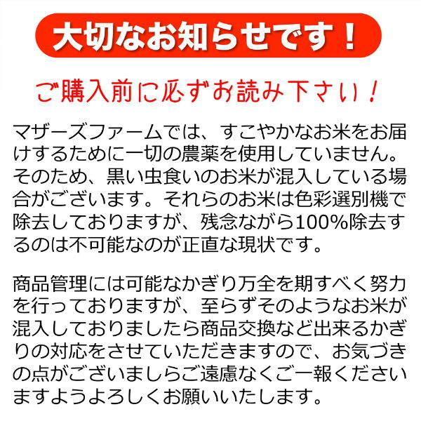 【新米】定期購入 10kgx6回 令和元年産 玄米 白米 今ずり米 無洗米 農薬不使用 コシヒカリ|arumama|11