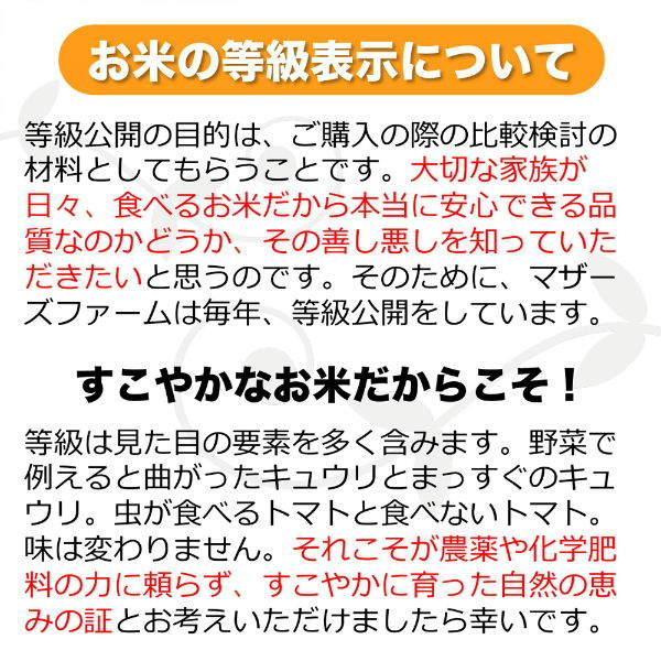【新米】定期購入 10kgx6回 令和元年産 玄米 白米 今ずり米 無洗米 農薬不使用 コシヒカリ|arumama|08