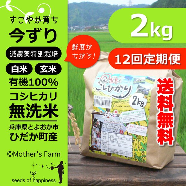 【新米】【定期購入】 2kgx12回 令和元年産 玄米 白米 今ずり米 無洗米 減農薬・特別栽培米 コシヒカリ arumama