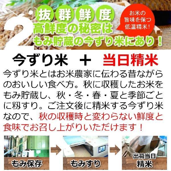 【新米】【定期購入】 2kgx12回 令和元年産 玄米 白米 今ずり米 無洗米 減農薬・特別栽培米 コシヒカリ arumama 06