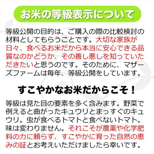 【新米】【定期購入】 2kgx12回 令和元年産 玄米 白米 今ずり米 無洗米 減農薬・特別栽培米 コシヒカリ arumama 08