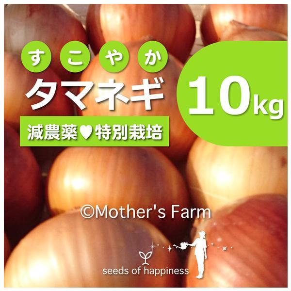 タマネギ 玉ねぎ 農薬90%カット 特別栽培【10kg】