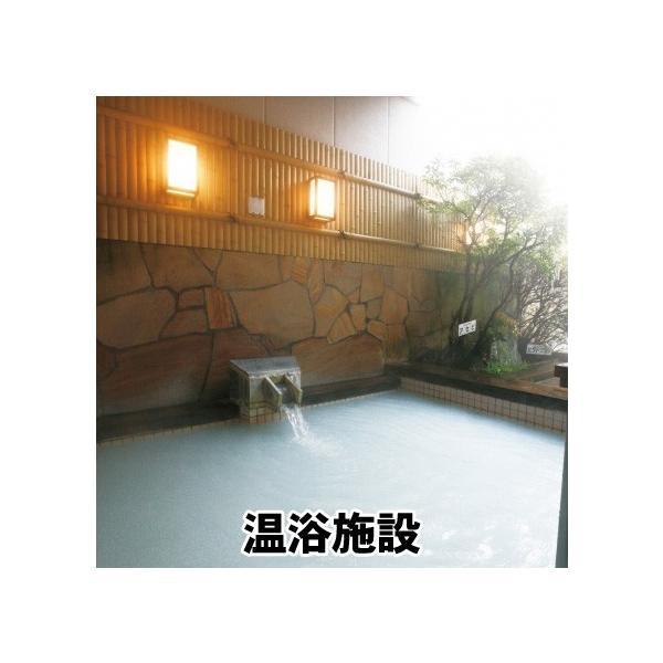 レジオネラ症対策 配管洗浄 セイバーオードリンST 20g×10錠|arumama|04