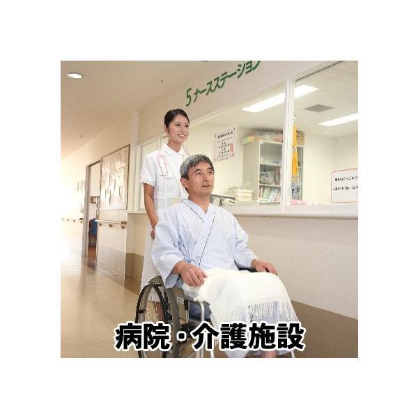 レジオネラ症対策 配管洗浄 セイバーオードリンST 20g×10錠|arumama|06