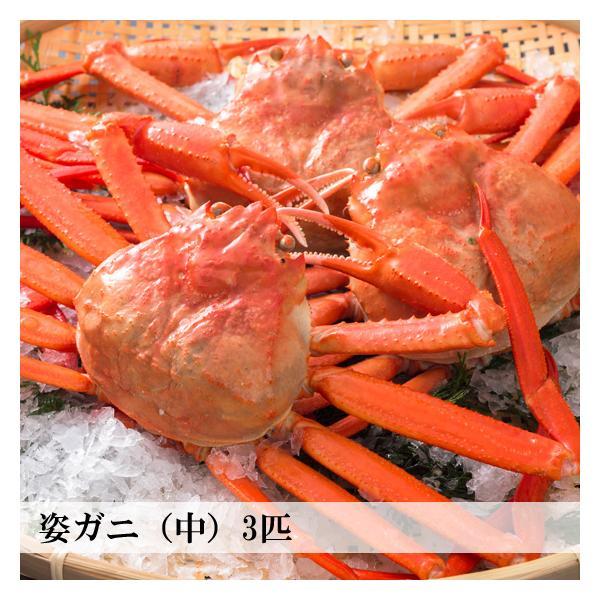 【新物】香住がに ベニズワイガニ 姿蟹 ボイル 500g×3匹 中松商店|arumama