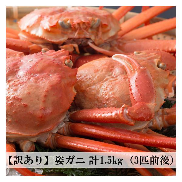 【冷凍】訳あり 香住がに ベニズワイガニ 姿蟹 ボイル 計1.5kg(3匹前後)中松商店|arumama
