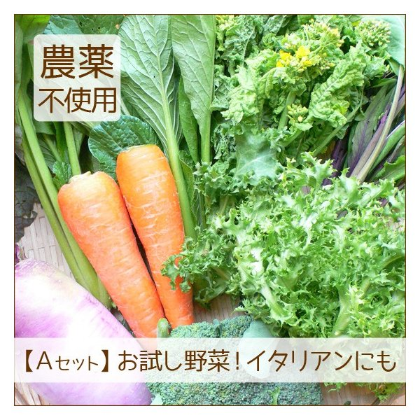 野菜セット 詰め合わせ お試し 農薬不使用 訳あり 不揃い 送料無料|arumama