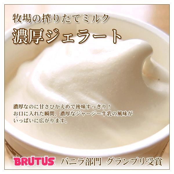 業務用アイスクリーム 業務用アイス arumama 05