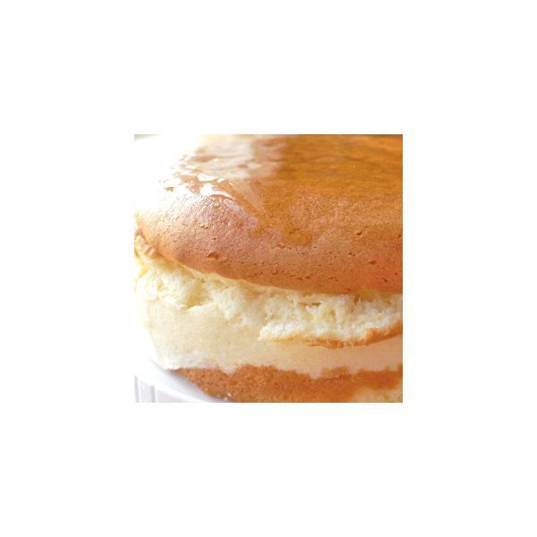 お試しセット 訳あり わけあり 割れ チーズケーキ 送料無料|arumama|04