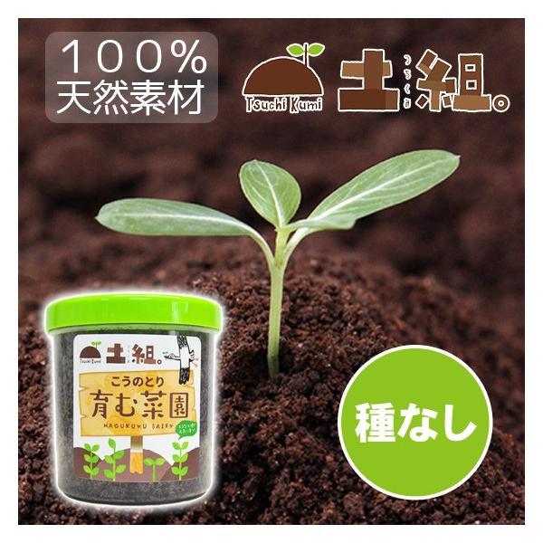 こうのとり育む菜園 プチ菜園 家庭菜園 腐葉土 お試しセット 種なし|arumama