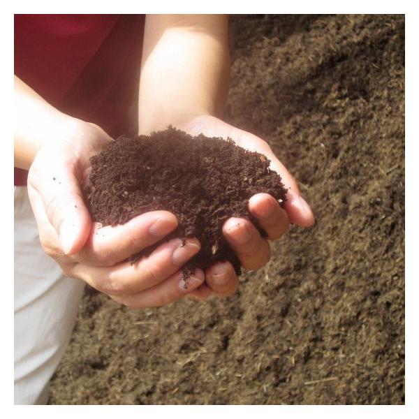 腐葉土 有機100% 家庭菜園 ガーデニング 1.2L×2袋 送料無料|arumama|04