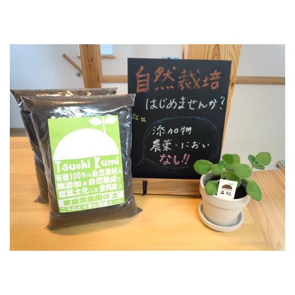腐葉土 有機100% 家庭菜園 ガーデニング 1.2L×2袋 送料無料|arumama|05