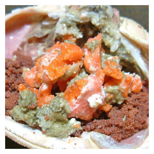 セコガニ せいこ蟹 せいこがに セコ蟹(大)カニ かに 蟹 香住・柴山産|arumama|02