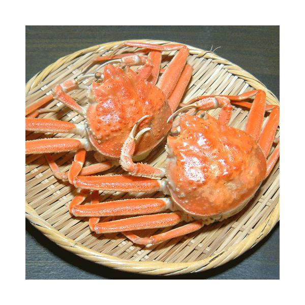 セコガニ せいこ蟹 せいこがに セコ蟹(大)カニ かに 蟹 香住・柴山産|arumama|05