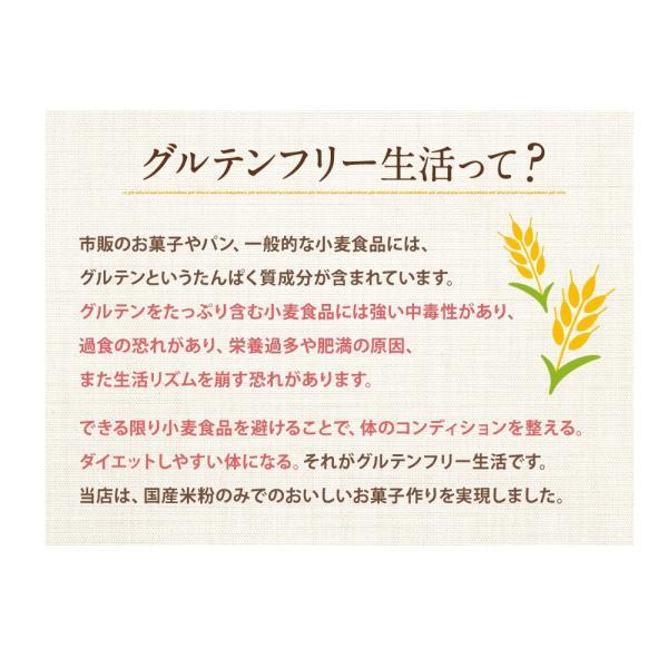本日ポイント5倍 グルテンフリー 米粉屋さんのもっちりベイク ケーキ ダイエット お菓子 焼き菓子|asagohan|11