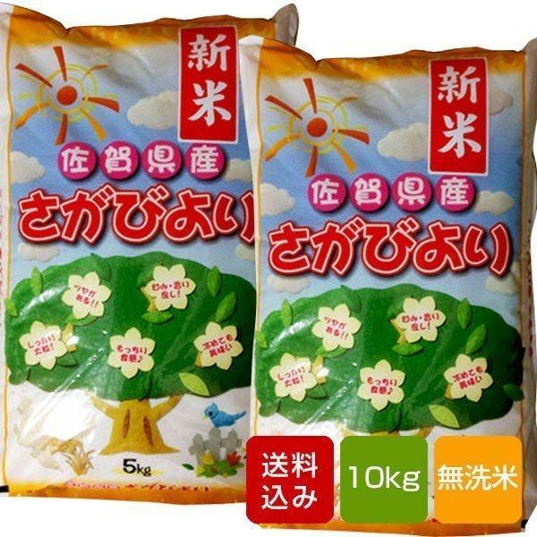 【新米 2021】さがびより 無洗米 10kg コメ 米 一等米 佐賀県産令和3年産
