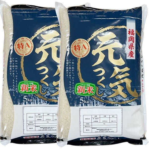【新米2021】元気つくし 10kg 白米 一等米 福岡県産  令和3年産  ギフト