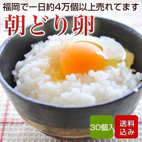 卵 30個入 (割れ保証一割(3個)含む)福岡産 タマゴ 送料無料