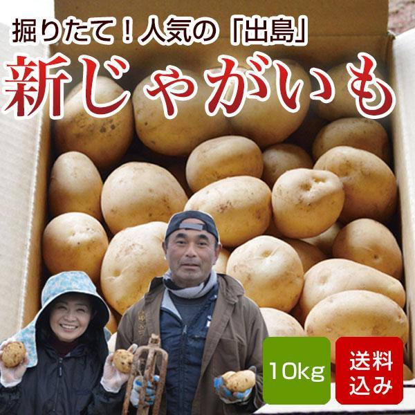 じゃがいも 10kg 出島 新ジャガイモ 長崎県島原産 お中元 ギフト クール便