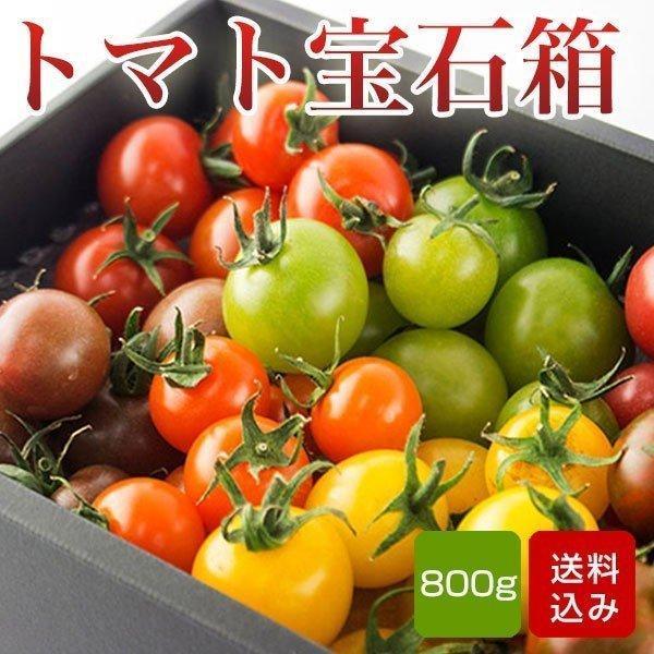 トマトの宝石箱 フルーツトマトの詰め合わせ 化粧箱入  お中元 ギフト クール便