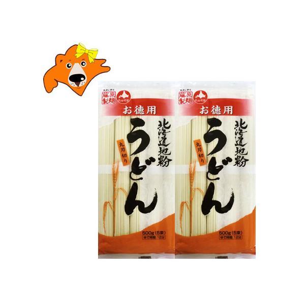 うどん 乾麺 送料無料 北海道 地粉 うどん かんめん 北海道 うどん 500 g(5束)×2袋 饂飩 価格 690円 ポイント消化 送料無料 うどん かんめん