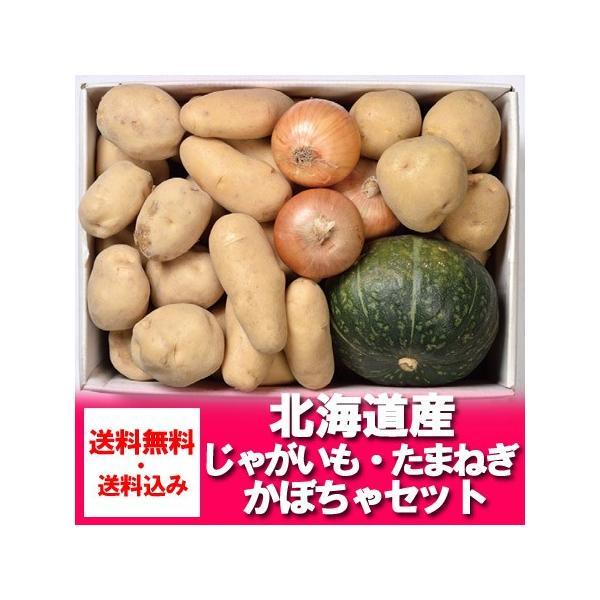 送料無料 男爵いも・北あかり・メークイン・玉ねぎ かぼちゃ 野菜 セット 詰め合わせ セット 価格3240円 旬の野菜セット 北海道の野菜
