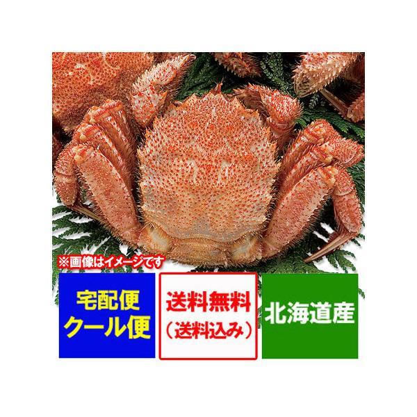 けがに 北海道産 毛蟹 送料無料 毛がに 特大 浜茹で 毛ガニ 1kg(1000 g)×1尾 価格10800円