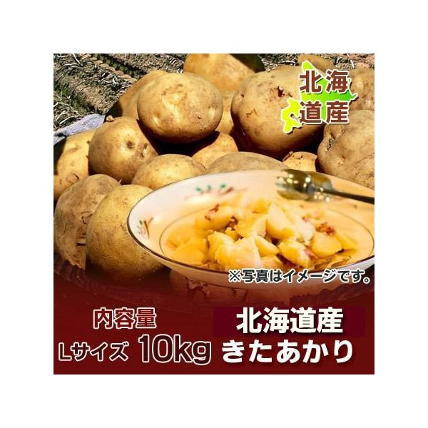 きたあかり 送料無料 じゃがいも 北あかり 北海道産 きたあかり 10kg Lサイズ 価格 3980円 キタアカリ 北海道 ジャガイモ