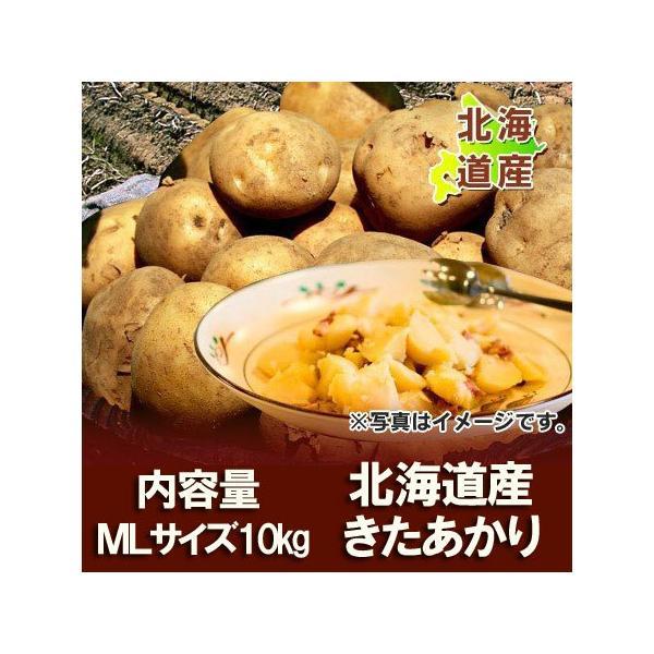 送料無料 じゃがいも 北海道 北あかり 北海道産 じゃがいも キタアカリ 10kg MLサイズ 価格3480円 きたあかり 北海道 ジャガイモ