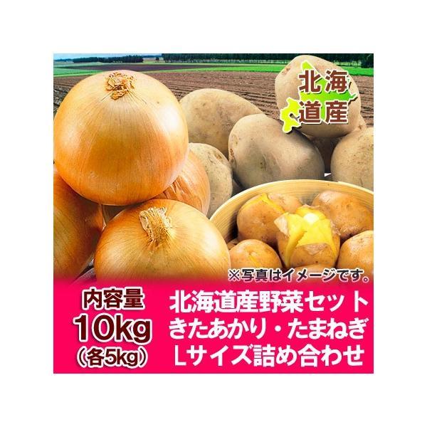 北海道 じゃがいも 送料無料 きたあかり 北海道産 野菜 北海道産の北あかりとたまねぎ 野菜セット 野菜詰合せ Lサイズ 10kg(各5kg)価格3480円