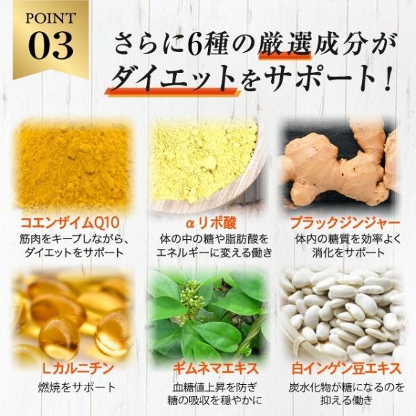 厳選、成分、ダイエット、サポート、コエンザイムQ10、αリポ酸、ブラックジンジャー、Lカルニチン、ギムネマ・シルベスタ、白インゲンマメ