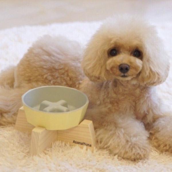 フードボウル 早食い防止 犬 Sサイズ 瀬戸焼 陶器 食器スタンド セット おしゃれ 日本製 AsanaYunaオリジナル 有害物質不使用 食器 黄色系|asanayuna2018|12