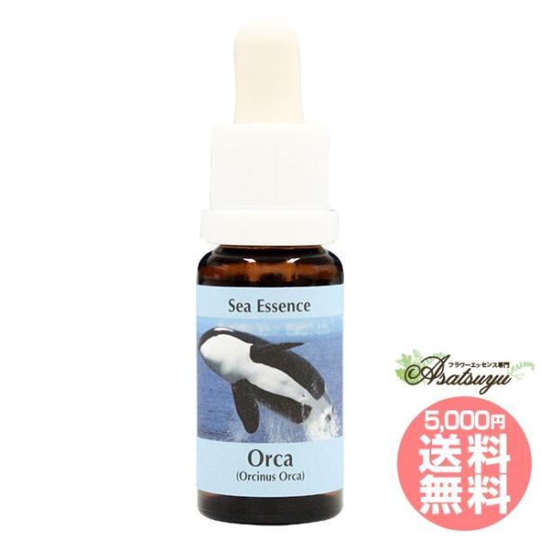 オルカ Orca コルテPHIエッセンス シーエッセンス|asatsuyu