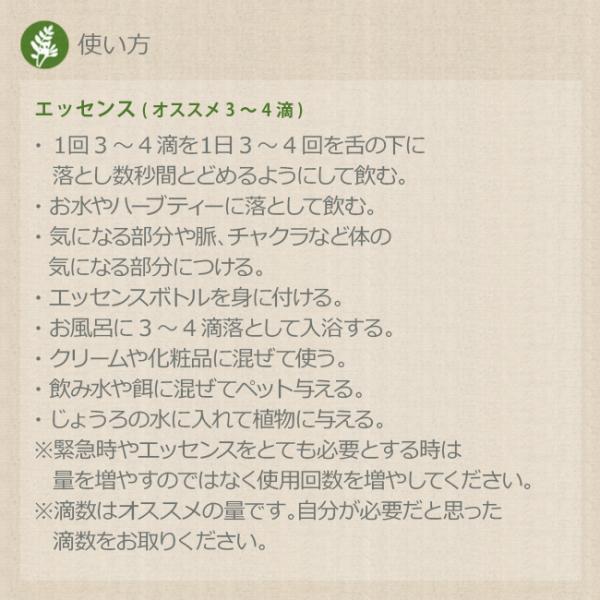 オルカ Orca コルテPHIエッセンス シーエッセンス|asatsuyu|02