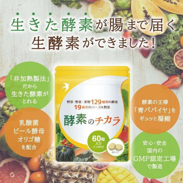 酵素 サプリ 酵母 ダイエット 酵素のチカラ コエンザイムQ10 送料無料 60粒 30日分|ashiyacojp