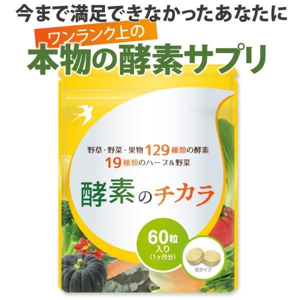 酵素 サプリメント ダイエット 酵母 サプリ 酵素のチカラ コエンザイムQ10 送料無料 2袋セット 120粒 60日分|ashiyacojp|02