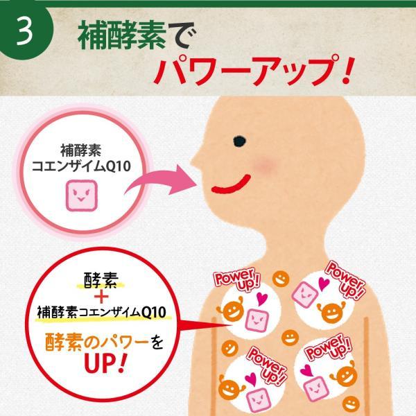 酵素 サプリメント ダイエット 酵母 サプリ 酵素のチカラ コエンザイムQ10 送料無料 2袋セット 120粒 60日分|ashiyacojp|12