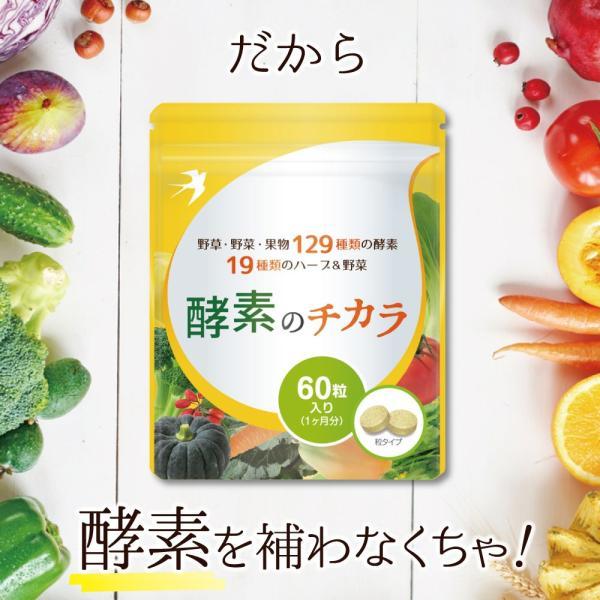 酵素 サプリメント ダイエット 酵母 サプリ 酵素のチカラ コエンザイムQ10 送料無料 2袋セット 120粒 60日分|ashiyacojp|08