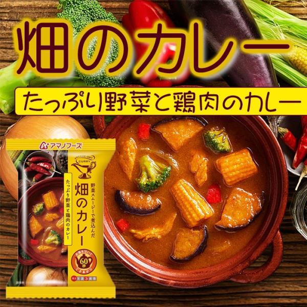 アマノフーズ フリーズドライ 畑のカレー たっぷり野菜と鶏肉のカレー×5個 (インスタント 即席)