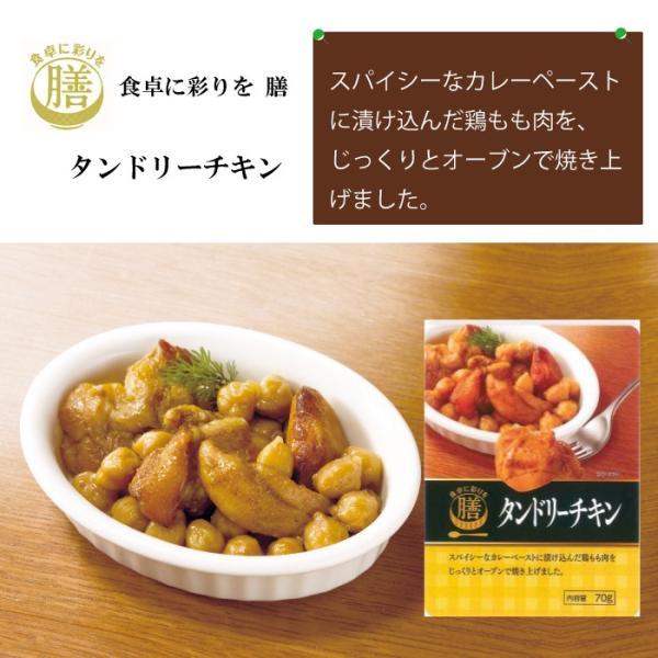 レトルト惣菜おかず タンドリーチキン70g asianlife 03