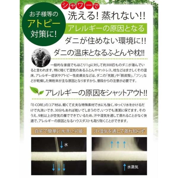 日本製 防ダニ  本体カバー も洗える E-COREピロー【M型】|assist-2019|05