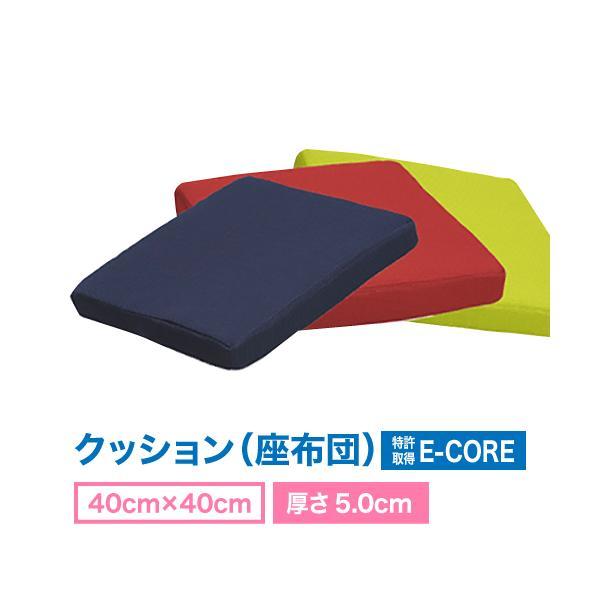 日本製 防ダニ 高反発  洗えるクション  E-COREクッション【40×40/厚さ5.0cm】|assist-2019