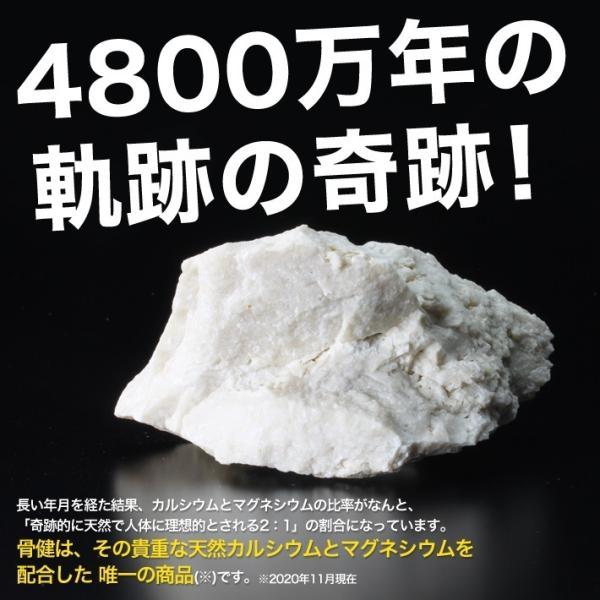 送料無料 天然 カルシウム マグネシウム サプリメント ASTALIVE アスタライブ カルマグ月桃 骨健 沖縄県 北大東島産 120粒 30日分|astalive|05