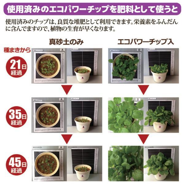 ル・カエル基本セット SKS110 グリーン | ルカエル エコクリーン 生ゴミ 生ごみ 処理 送料無料|atcare|05