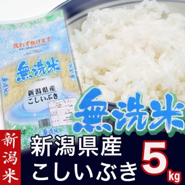 2年産 無洗米 新潟県産 こしいぶき 5kg(新潟 新潟米 お米 R2)