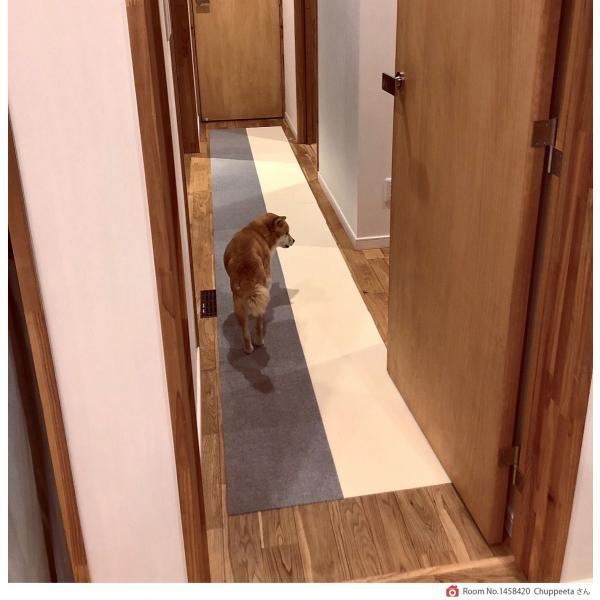 【送料無料】サンコー おくだけ吸着 撥水タイルマット 床暖房対応 フローリング 防滑 犬 フローリング 滑り止め 犬 猫 床 保護マット  脱臼防止 30×30cm 4mm|atelier-eirene|16