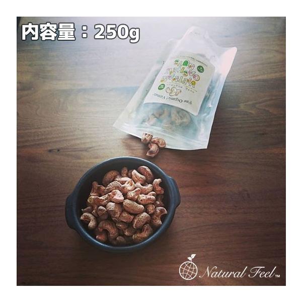 「土日祝も出荷可能」ナチュラル フィール 皮付き ポリフェノールいっぱい厳選ベトナム産 自然塩味 素焼き カシューナッツ 250gNatural Feel
