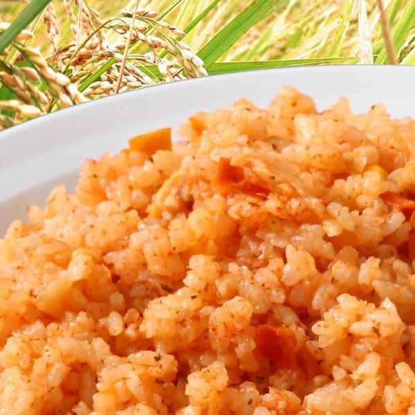 尾西食品 水でも作れるアルファ米 チキンライス 1食分/100g(賞味期限5年)出来上がり260g 国産米100%|atrescue|02